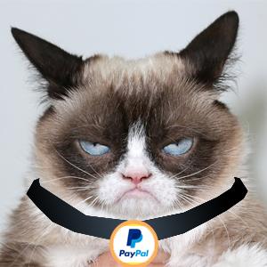 paypal cat